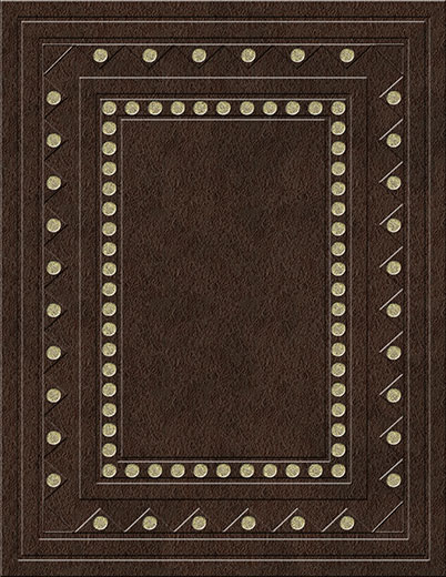 Book Cover 11 Solid